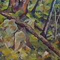 The Fallen Tree by Don Perino