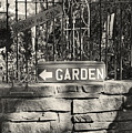 The Garden Gate by Jim Furrer