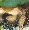 The Lion by Anthony Burks Sr