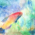 The Little Fish by Arline Wagner