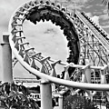 The Loop Black And White by Douglas Barnard