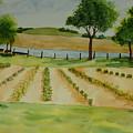 The Mangan Farm  by Vicki  Housel