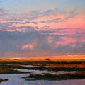 The Marsh  by Gary Gowans