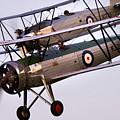 The Old Aircraft by Angel Ciesniarska