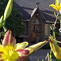 The Parish House With Lilys by Donielle Boal