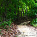 The Path by Ginger Howland
