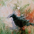 The Raven Sitting Lonely by Sandy Applegate