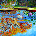 The Reflections Of Fall by John Lautermilch