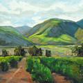The Scent Of Citrus - Santa Paula Citrus Grove Central Coast Landscape by Karen Winters