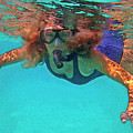 The Snorkeler by Bette Phelan