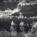 The Spectacular Grand Canyon Bw by Julie Niemela