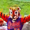 The Tiger by Lynne Jenkins