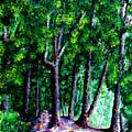 The Trail by Stan Hamilton