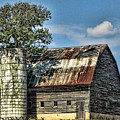 The Tree Silo by Kristie  Bonnewell