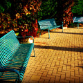 Three Benches by Perry Webster