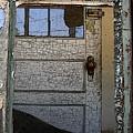 Through A Broken Window by Anne Cameron Cutri