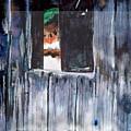 Thru The Barn Window by Seth Weaver