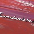 Thunderbird Car Nameplate by Gordon Wood