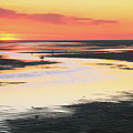Tidal Flats At Sunset by Roupen  Baker