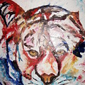 Tiger by Adeniyi Peter
