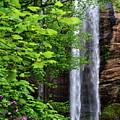 Toccoa Falls In Georgia by Eva Thomas