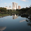 Tokyo Highrises With Garden Pond by Carol Groenen