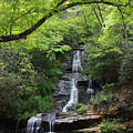 Tom Branch Falls - Gsmnp by Shari Jardina