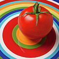 Tomato On Plate With Circles by Garry Gay