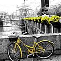 Torino by Irene Spedicato