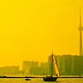 Toronto At Sunset by Ian  MacDonald