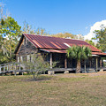 Tosohatchee Cattle Ranch In Central Florida by Allan  Hughes