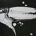 Toucan by Sasa Delic