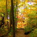 Trailhead Light by Ed Smith