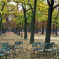 Trees And Empty Chairs In Autumn by Stephen Sharnoff