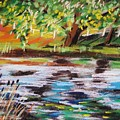 Trees Edge The Pond by John Williams