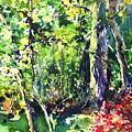 Trees by Robin Miller-Bookhout