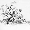 Trees Rocks And A Ball by Padamvir Singh