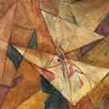 Triangulation by Dan Earle