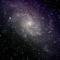Triangulum Galaxy by A. V. Ley