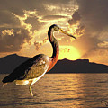 Tricolored Heron At Sunset by David Salter
