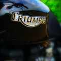 Triumph by Perry Webster