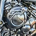 Triumph Tiger 800 Xc Engine by Paul Ward