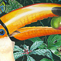 Tropical Rain Forest Toucan by Richard De Wolfe