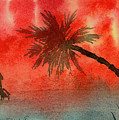 Tropical Sunset by Kelly Miller