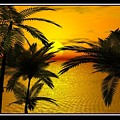 Tropical Sunset by William  Ballester