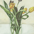 Tulips by Sarah Madsen
