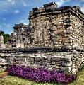 Tulum Temple Ruins by Tammy Wetzel