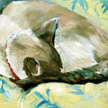 Turtle by Art Nomad Sandra  Hansen