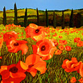 Tuscan Poppies by JoeRay Kelley