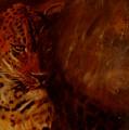 Twilight Leopard by Arlene Rabinowitz